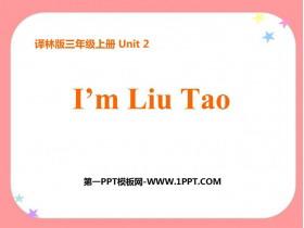 《I'm Liu Tao》PPT�n件