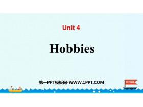 《Hobbies》PPT教�W�n件