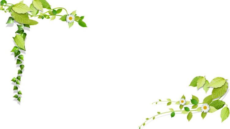两套绿色叶子PPT边框背景图片
