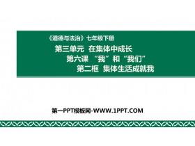 《集体生活成就我》PPT优质课件91国产福利实拍在线观看
