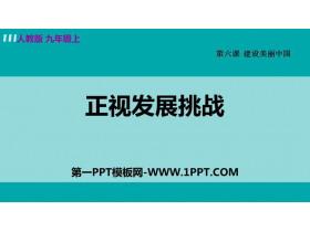 《正视发展挑战》PPT优质课件