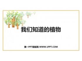 《我��知道的植物》PPT�n件