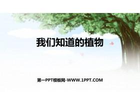 《我��知道的植物》PPT教�W�n件