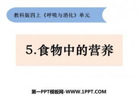 《食物中的营养》PPT课件