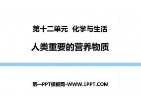 《人�重要的�I�B物�|》PPT教�W�n件