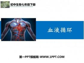 《血液循�h》PPT教�W�n件