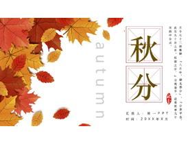 精美秋天树叶背景图的秋分节气介绍PPT模板