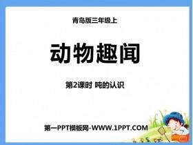 《动物趣闻》PPT教学课件(第2课时)