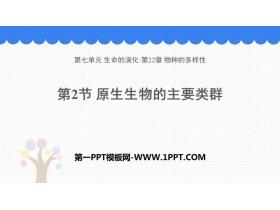 《原生生物的主要类群》PPT下载