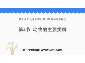 《动物的主要类群》PPT免费课件