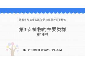 《植物的主要类群》PPT教学课件(第2课时)