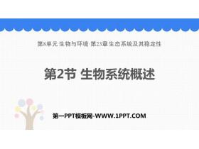 《生态系统概述》PPT教学课件