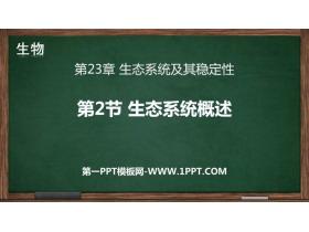 《生态系统概述》PPT免费课件