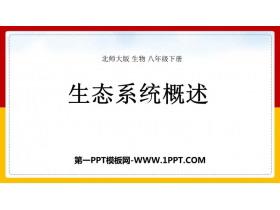 《生态系统概述》PPT精品课件