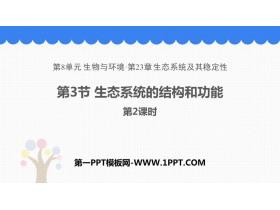 《生态系统的结构和功能》PPT课件(第2课时)
