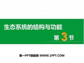《生态系统的结构和功能》PPT优质课件