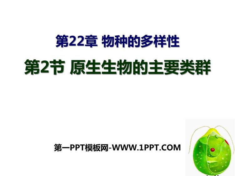 《原生生物的主要类群》PPT免费课件