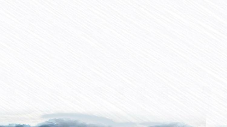 彩色水墨荷花花枝PPT背景图片