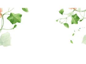 五张绿色清新绿色藤蔓PPT背景图片